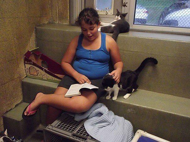 Usa, bambini leggono libri ai gatti per curarli