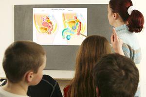 educazione sesssuale a scuola
